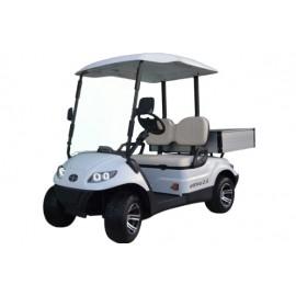 Golf Cart Italcar Attiva 2.6