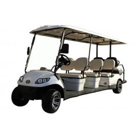 Golf Cart Italcar Attiva 8L.6